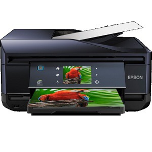 Epson XP-800 Ink Cartridges