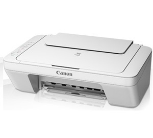 Canon Pixma MG2900 Ink Cartridges