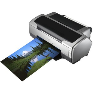 Epson Stylus Photo R1800 Ink Cartridges