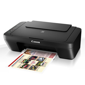 Canon Pixma MG3000 Ink Cartridges
