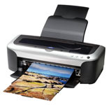 Epson Stylus Photo 2100 Ink Cartridges