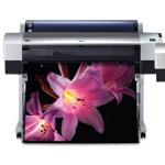 Epson Stylus Pro 9800 Ink Cartridges